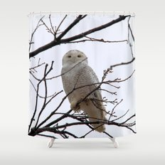 Snowy Owl in the Treetop Shower Curtain