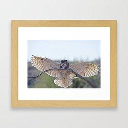 The Back Light Landing  Framed Art Print