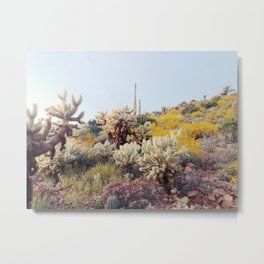 Arizona Color Metal Print