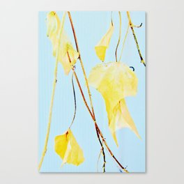 Yellow Ivy Canvas Print