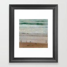 Seagulls at the beach Framed Art Print
