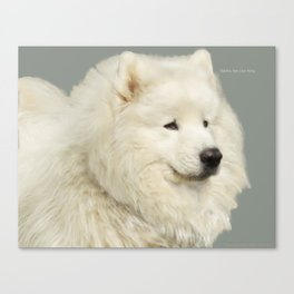 "Sacha; the Samoyed ""Lion King"" Canvas Print"