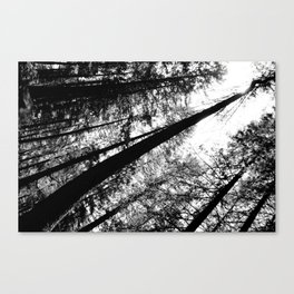 High and right Canvas Print