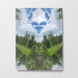 Starry, Starry Day Metal Print