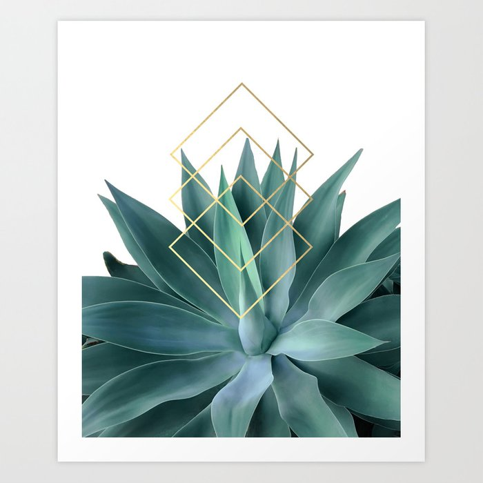 Agave geometrics Kunstdrucke
