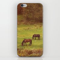 horses iPhone & iPod Skins featuring Horses by SensualPatterns