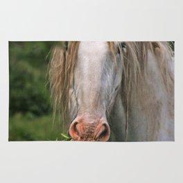 White heavy horse Rug