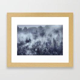 Simbiosis IV Framed Art Print