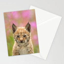 Falk - the lynx kitten Stationery Cards