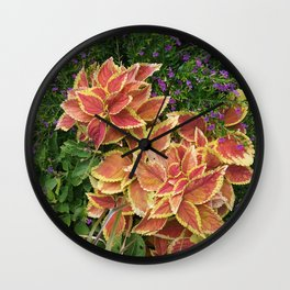 Orange Coleus Wall Clock