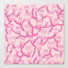 Pink Thorn Canvas Print