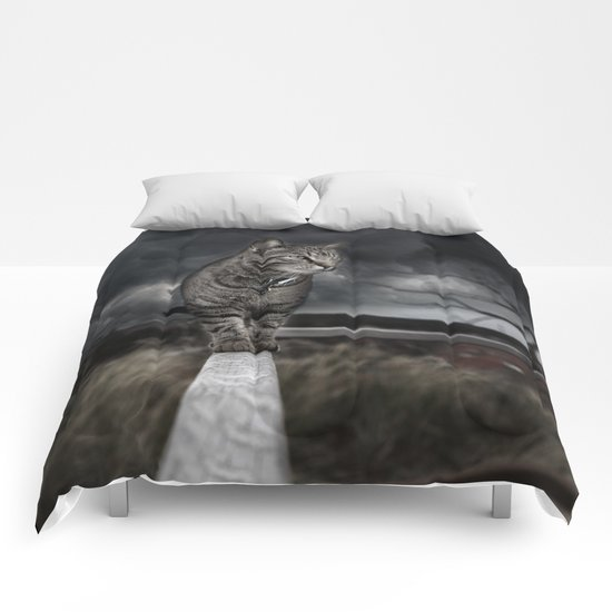 Cat on the Prowl  Comforters