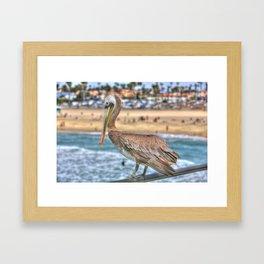 Hanging on the pier rail in Surf City. Framed Art Print