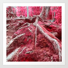 Infrared Art Print