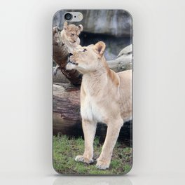 You're the Best iPhone Skin