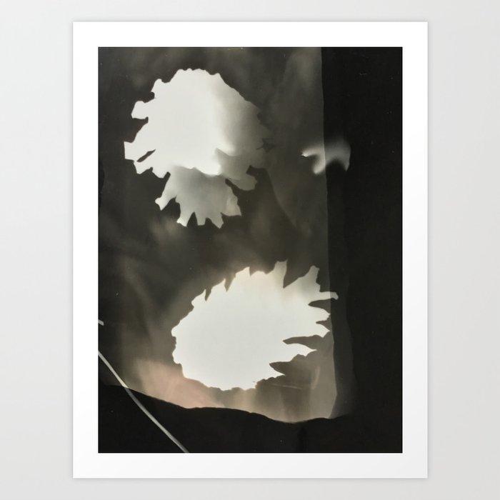 Sepia Pine Cones, Art Print
