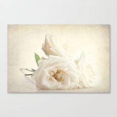 Three white roses Canvas Print