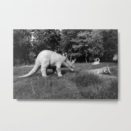 Black and White Rhino Metal Print
