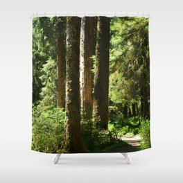 Walkway in Hoh Rainforest Shower Curtain