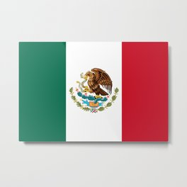 Flag of Mexico - Authentic Scale and Color (HD image) Metal Print