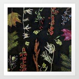 Festivus Botanicus Art Print