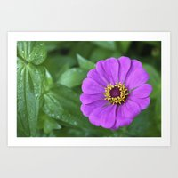 rileigh smirl Art Prints featuring Bright Flower by Rileigh Smirl