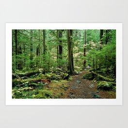 Forest Garden Art Print