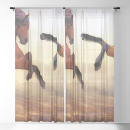 Two Fury Horses On Hind Legs Ultra HD Sheer Curtain