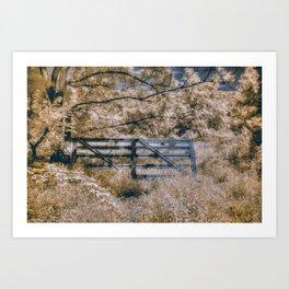 Infrared Fence Art Print