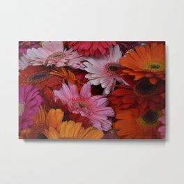 Gerbera Flower Bunch Metal Print