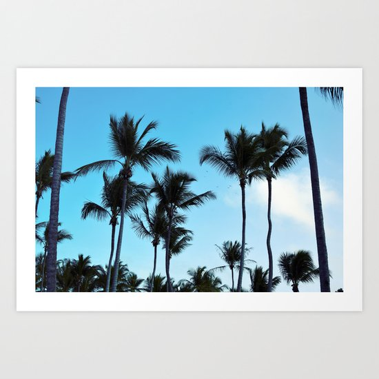 Coconut trees | Praia do Espelho | Brazil Art Print