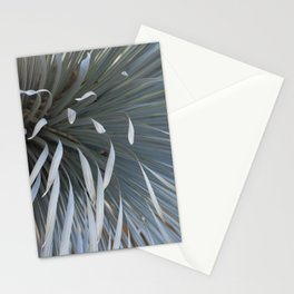 Growing grays Stationery Cards