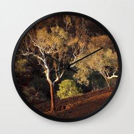 Eucalyptus trees in evening sunlight, Karijini National Park, Western Australia Wall Clock