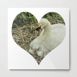 Mother Swan VI Metal Print