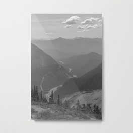 Nisqually River Valley Metal Print