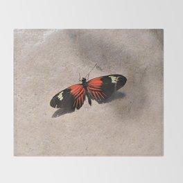 Postman Butterfly Sunbathing Throw Blanket