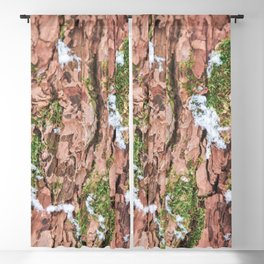 Woodland Winter - Nature Photography Blackout Curtain