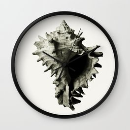 fossils nature Wall Clock