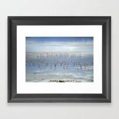 Flamingos at the blue lake Framed Art Print
