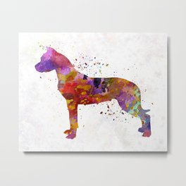 Dogo Argentino in watercolor Metal Print