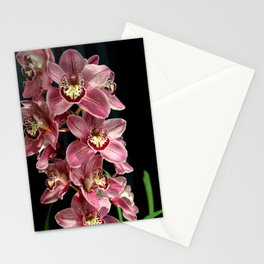 It's The Razzies! Stationery Cards