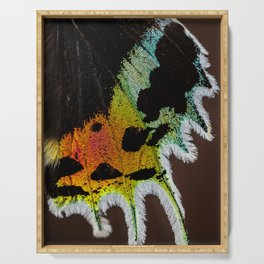 Wing of a Madagascan Sunset Moth, Shimmering with the Vivid Imagination of Nature Serving Tray
