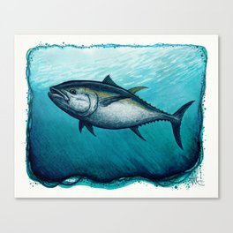 Bluefin Tuna ~ Watercolor Painting by Amber Marine,(Copyright 2016) Canvas Print