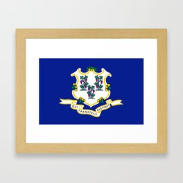 State Flag of Connecticut Framed Art Print
