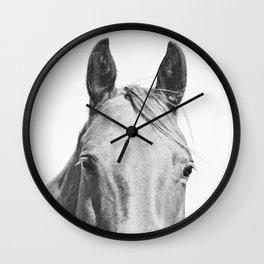 Light Horse Photograph Wall Clock