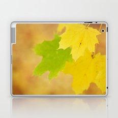Gold rush Laptop & iPad Skin
