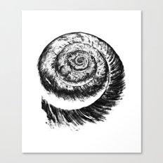 snail abstract I Canvas Print