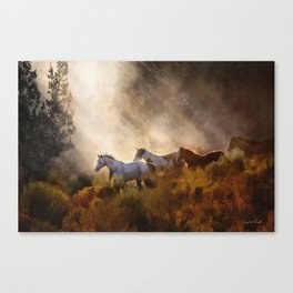 Horses in a Golden Meadow by Georgia M Baker Canvas Print