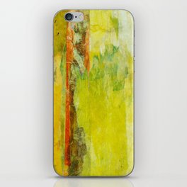 Two Gardens (1 of 2) iPhone Skin