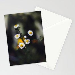 Backyard Flowers (5) Stationery Cards
